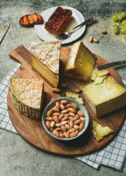 Cheese platter with cheese assortment, green grapes, bread, honey and nuts over grey concrete background. Party or gathering eating concept